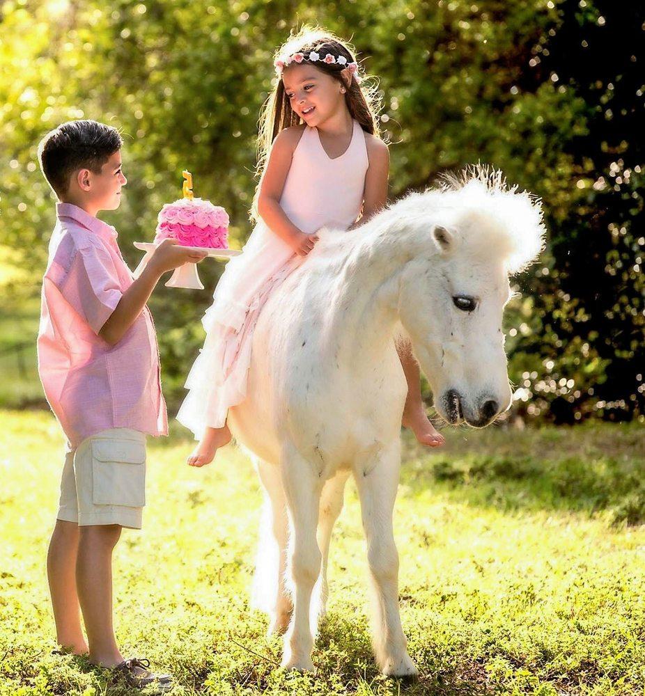 Ponies & Petting Zoo of Miami