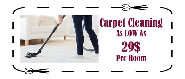 Leather And Fabric Carpet Cleaning Services In Newbury Park Ig2