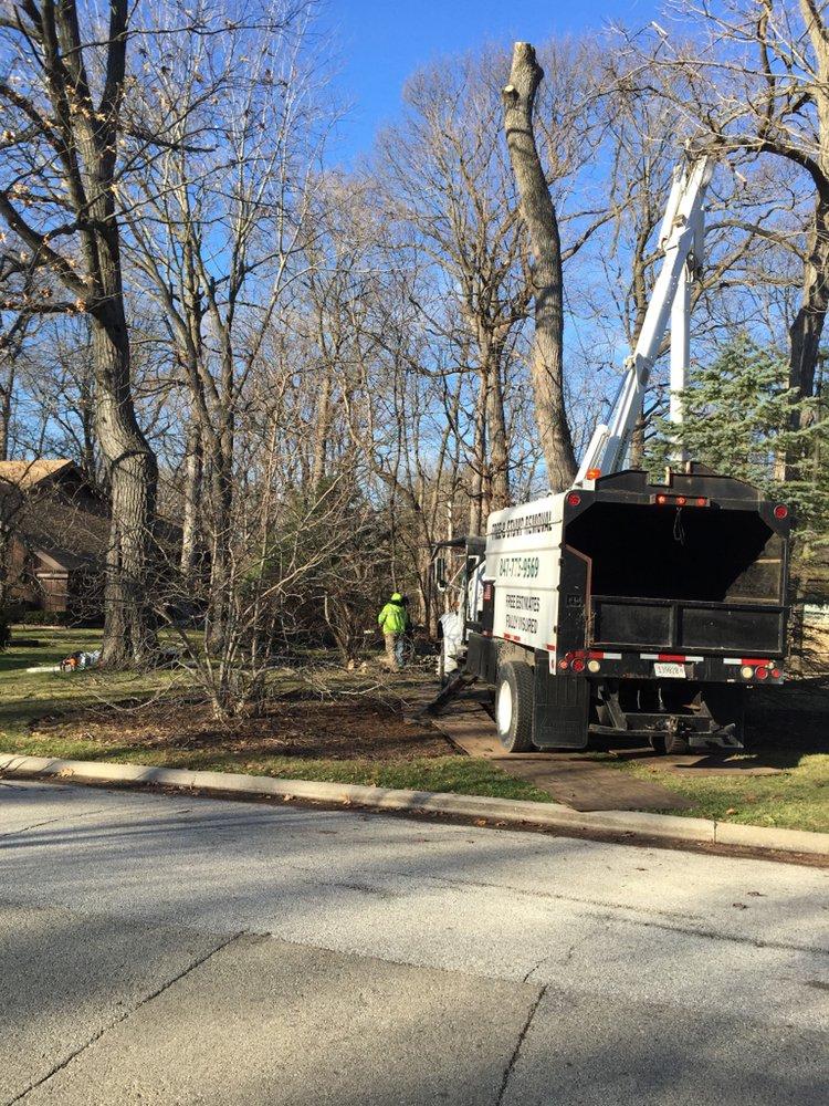 Eddy's Tree Service: 21190 W Rollins Rd, Lake Villa, IL