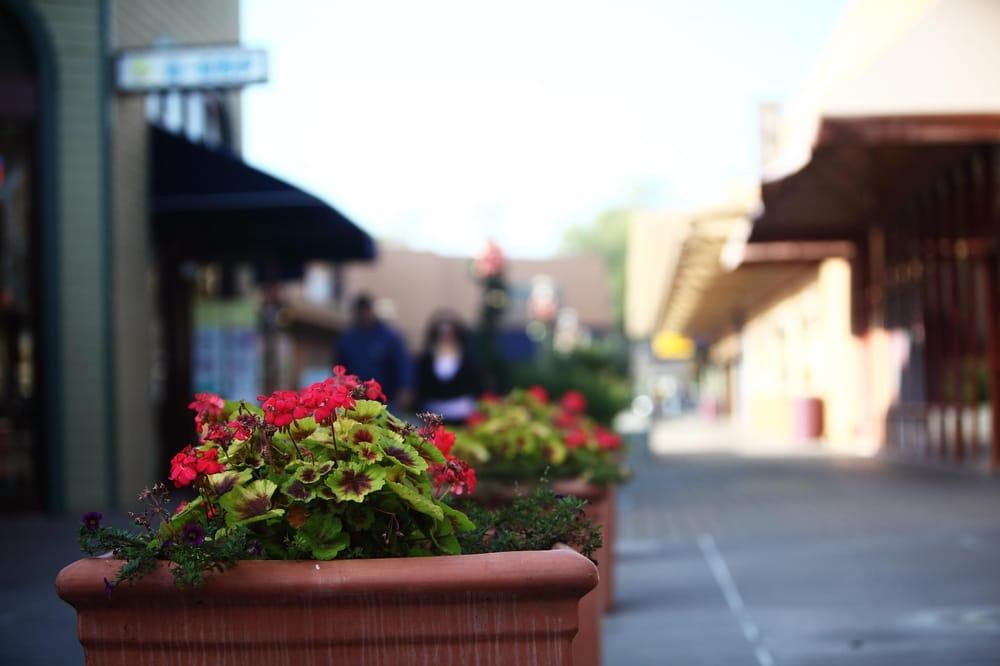 The Fremont Hub: 39261 Fremont Blvd, Fremont, CA
