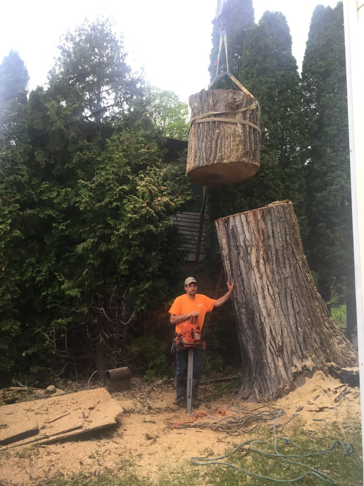 Quality Tree Services: Verona, NJ