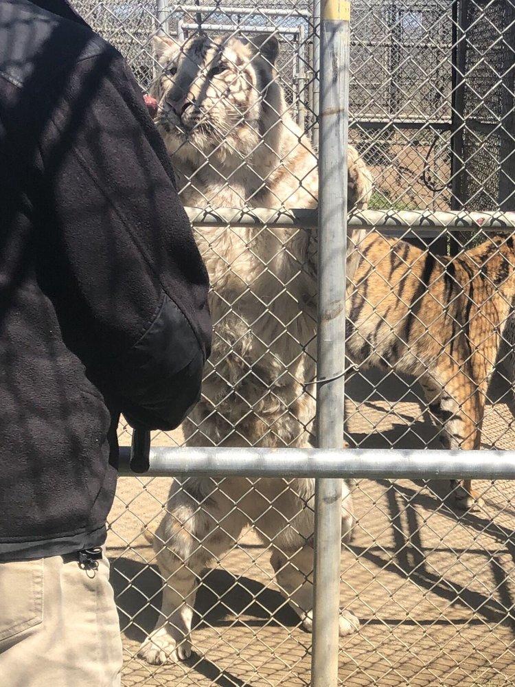 Lions Tigers & Bears: 24402 Martin Way, Alpine, CA