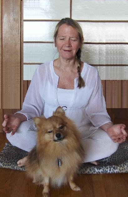 Reja Joy Yoga Studio: 14850 Laurel Ave, Omaha, NE