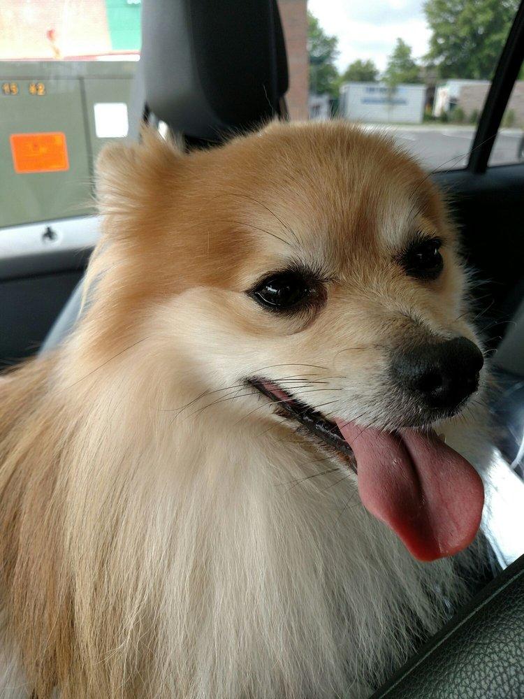 Morganna Animal Clinic & Boarding Kennel