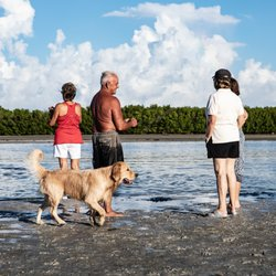 Photo Of Dog Beach Park Fort Myers Fl United States Enjoying Low