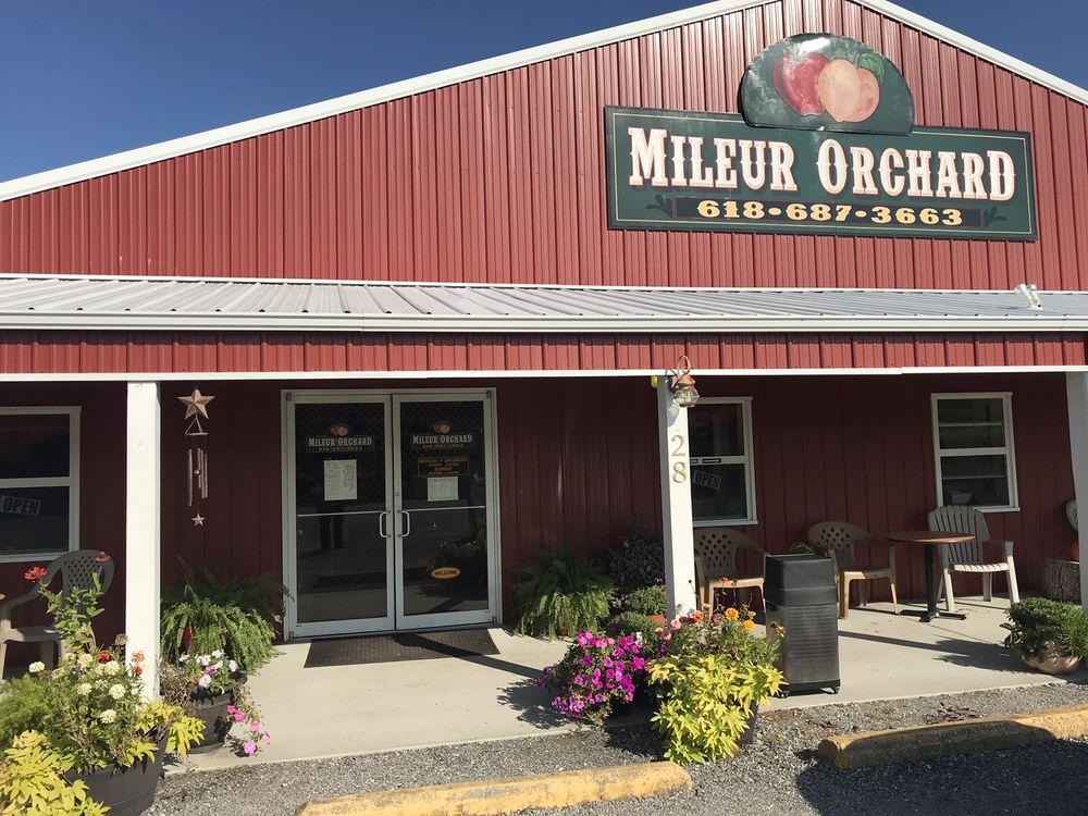 Mileur Orchard: 172 Mileur Orchard Rd, Murphysboro, IL