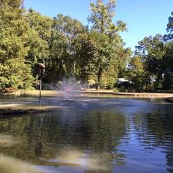 Mercer Arboretum And Botanic Gardens 130 Photos 37 Reviews Parks Humble Tx Phone