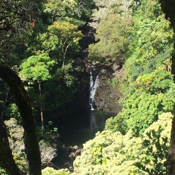 Garden of Eden - 561 Photos & 144 Reviews - Botanical Gardens - Mile ...