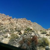photo of christmas tree pass laughlin nv united states