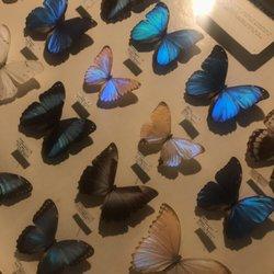 May Natural History Museum - 710 Rock Creek Canyon Rd