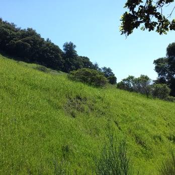 Almaden Quicksilver County Park - 739 Photos & 219 Reviews - Park ...