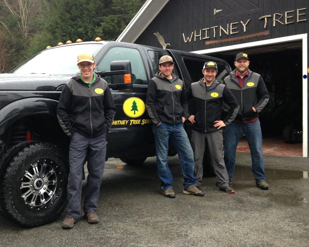 Whitney Tree Service: 105 Vermont 100, Warren, VT