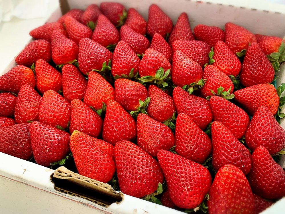 Mora Strawberry Farms: 4117 Riverside Dr, Chino, CA