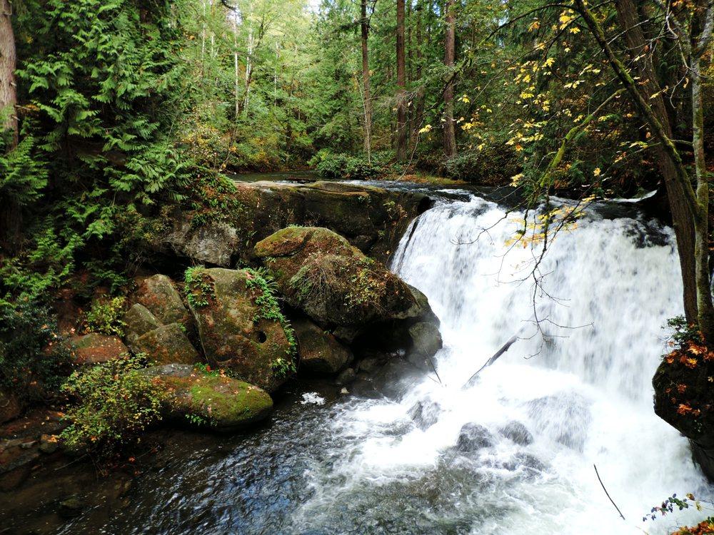Photo of Whatcom Falls Park - Bellingham, WA, United States. Whatcom Falls at Whatcom Falls Park - October 28, 2016