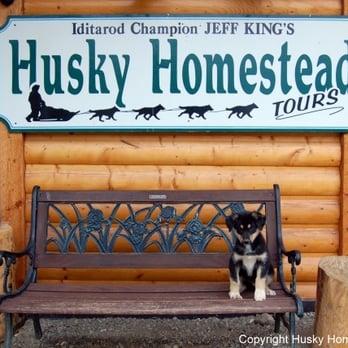 Husky Homestead Tours Photos Reviews Tours Denali - Husky homestead