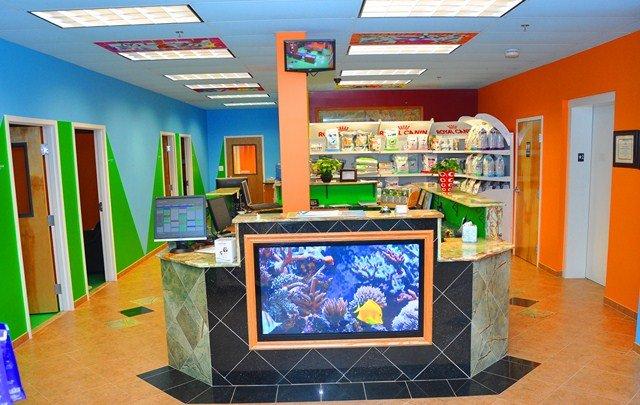 NOVA Pets Health Center: 3935 Avion Park Ct, Chantilly, VA