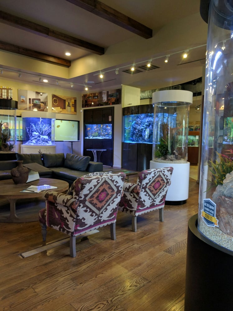 The fish gallery 66 photos 58 reviews pet stores for Fish store houston
