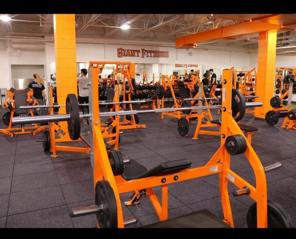 Giant Fitness