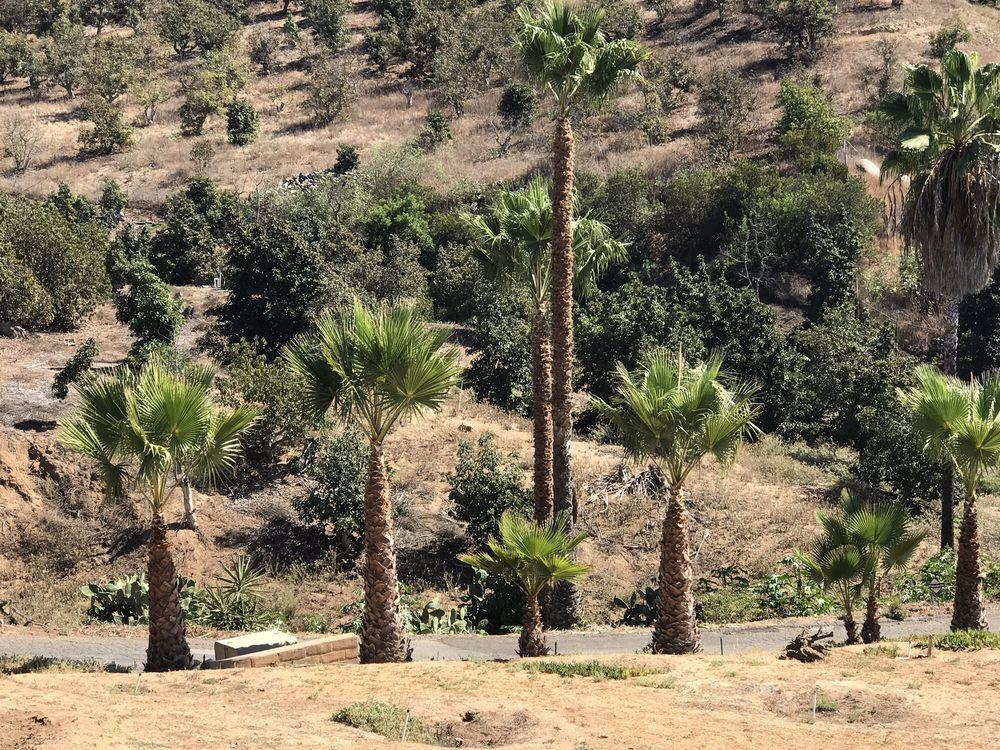Montejo Landscape Construction