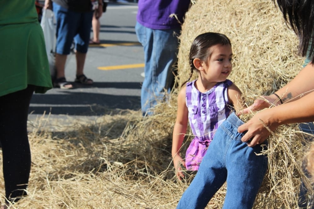 Scarecrow Festival: Meridian St, Dade City, FL