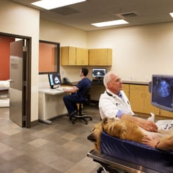 Photo Of VCA PetCare East Veterinary Hospital