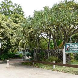 Maui Nui Botanical Gardens 26 Photos Botanical Gardens 150 Kanaloa Ave Kahului Hi