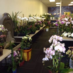 Photo Of Orchid Barn Fresno Ca United States