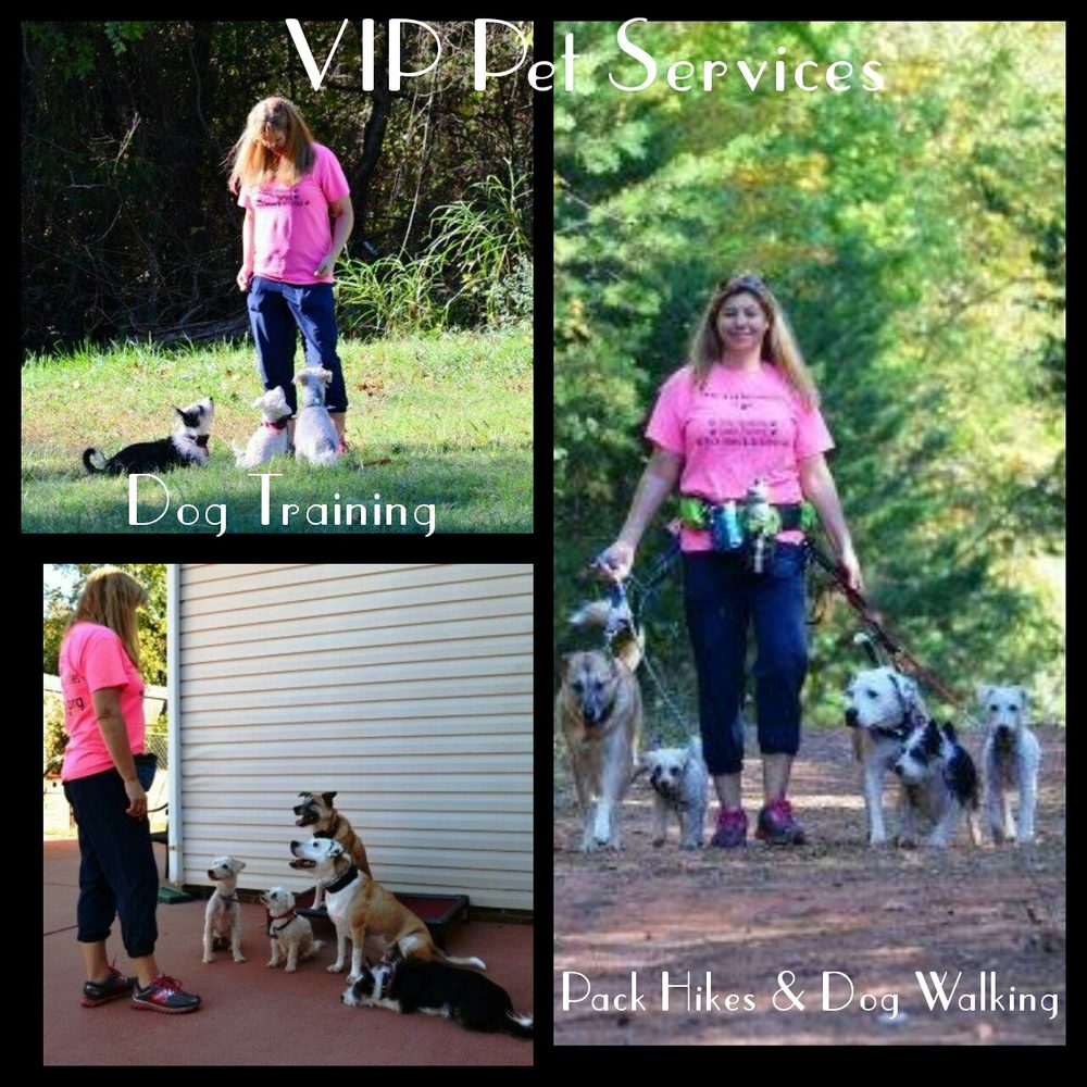 vip pet services   dog walkers   13706 hastings farm rd