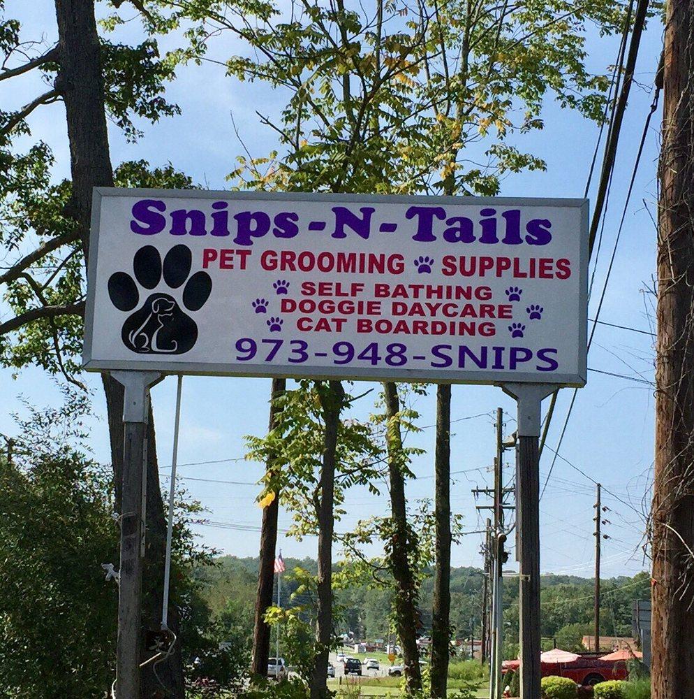 Snips-N-Tails: 328 Rte 206 N, Branchville, NJ
