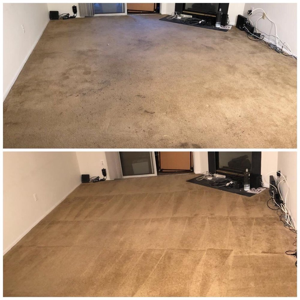 TAKAM Carpet Cleaning & Restoration: 130 Ames Rd, Silver Spring, MD
