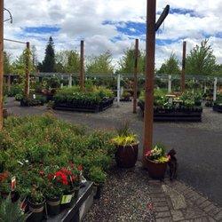 shorty s garden center 13 photos 27 reviews nurseries gardening 10006 se mill plain
