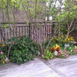 Garden Design Nyc garden scene home Photo Of New York Plantings Garden Design Brooklyn Ny United States Beautiful