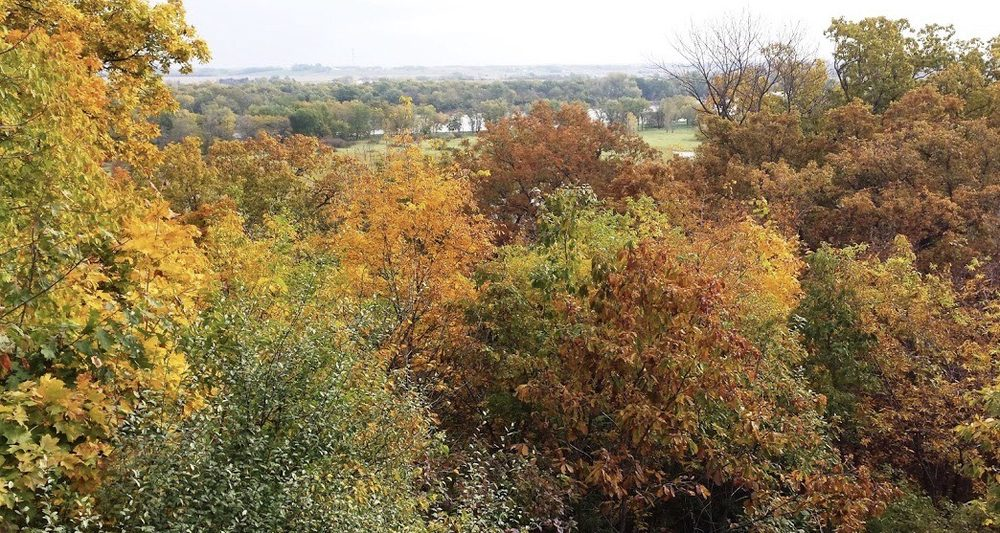 Chinkapin Bluffs Recreation Area: 14198 R Ave, Columbus Junction, IA