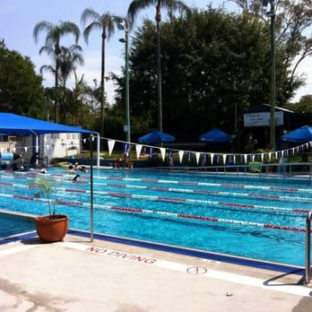 Ithaca Pool Swimming Pools 131 Caxton St Paddington