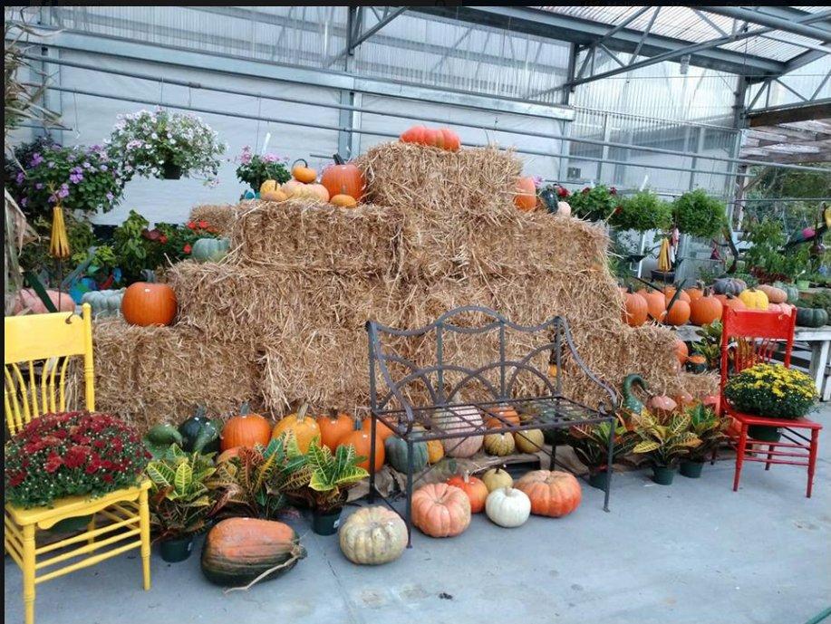 Nobles Greenhouse & Nursery