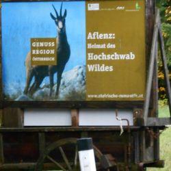 Photo Of Pension Gierlinger Aflenz Kurort Steiermark Austria Fremdenzimmer