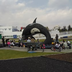 Parque de la Niñez - 17 fotos - Parques y jardines - Blvd del Niño ...