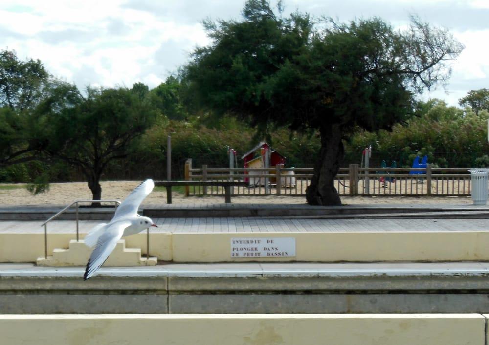 Bassin de baignade d audenge swimming pools port d for Bassin de baignade