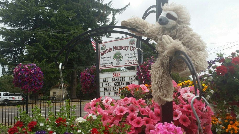Kamis Nursery: 7978 Portland Rd NE, Salem, OR