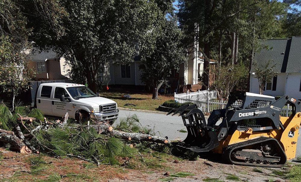 Gaycas Tree Services: Gaston, SC