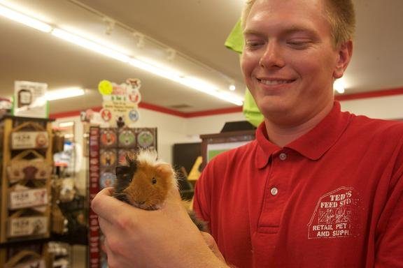 Ted's Pet & Feed: 17950 Burnham Ave, Lansing, IL