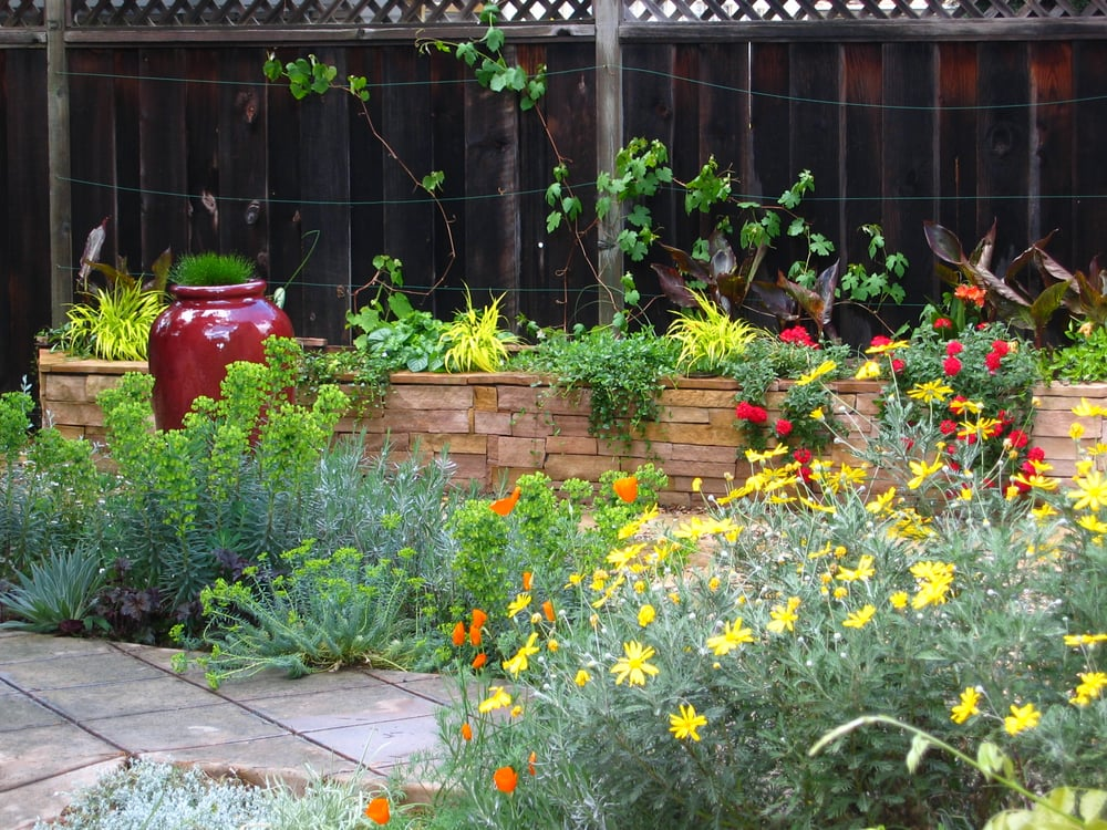 Eclectic Palo Alto Patio With Stone Wall And Drought