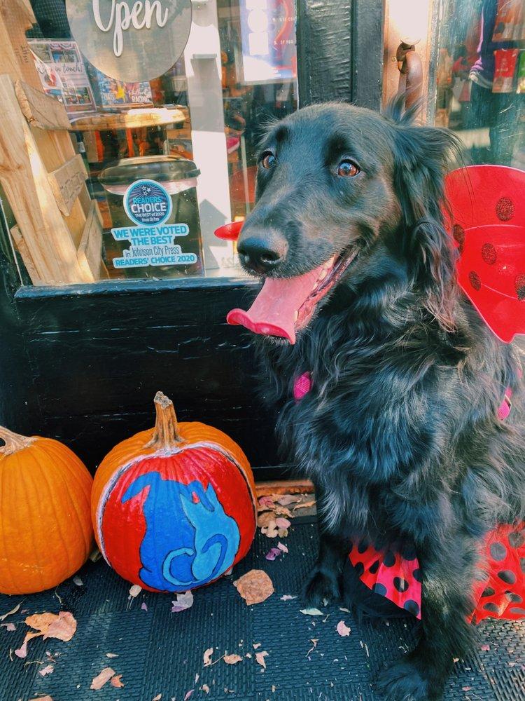 Tennessee Tails Pet Boutique: 111 E Main St, Jonesborough, TN