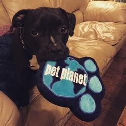 Pet planet 16 reviews pet stores 8912 e via linda photo of pet planet scottsdale az united states arya loves pet planet solutioingenieria Image collections