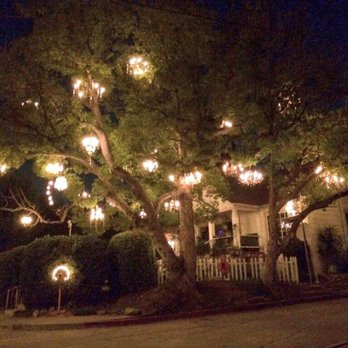 Chandelier Tree - 517 Photos & 163 Reviews - Local Flavour - 2811 ...