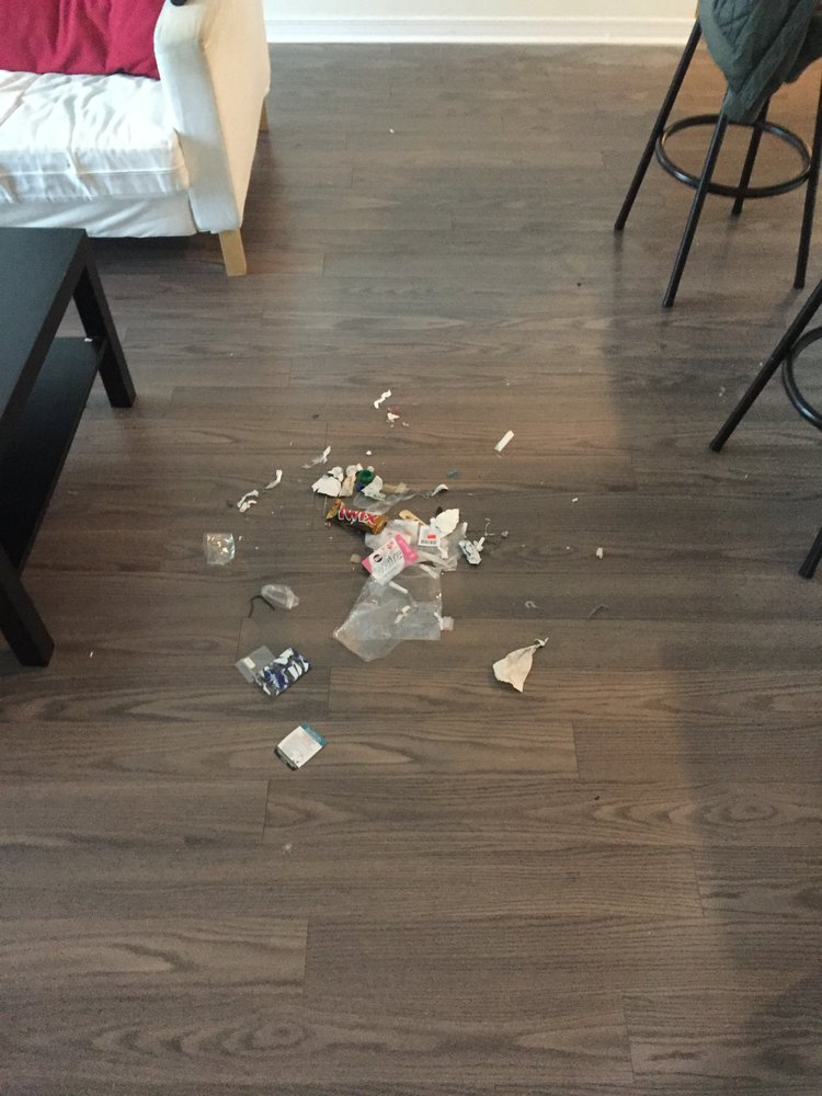 Garbage dumped out onto floor by maids after a complaint was