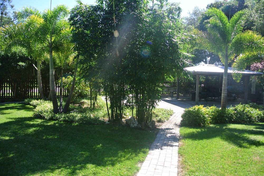 Bamboo Landscape with yin yang bamboo - Yelp