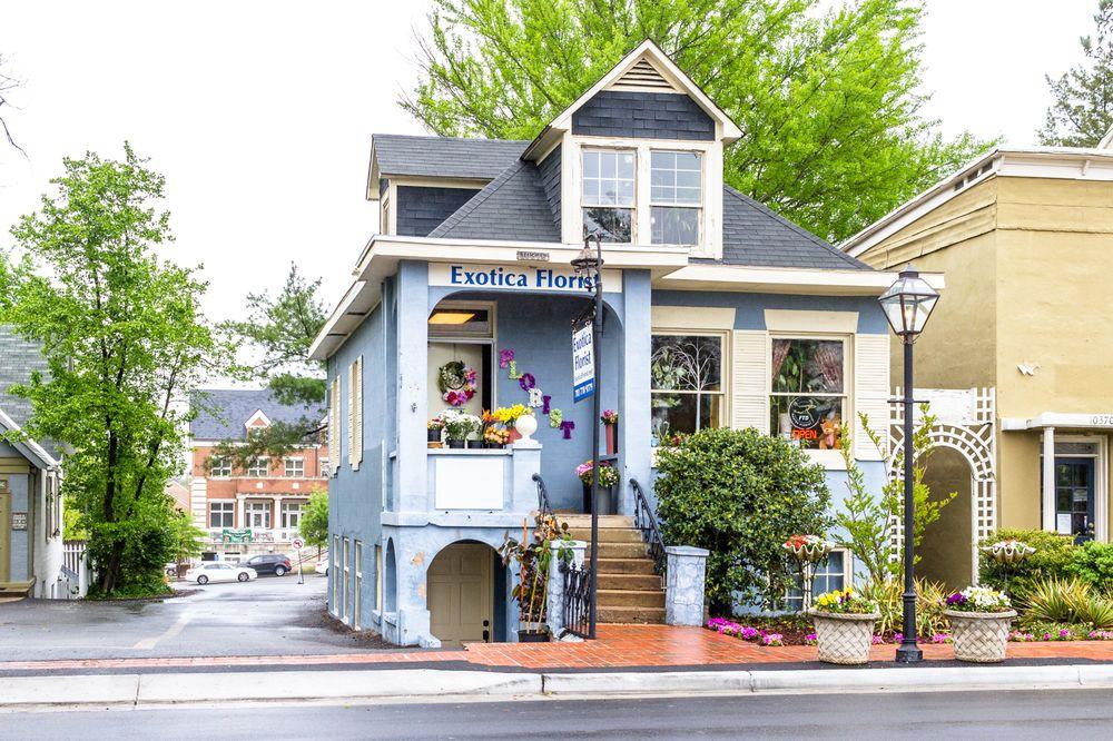 Exotica Florist: 10376 Main St, Fairfax, VA