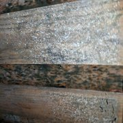 More Water Moist Photo Of Allways Roofing Snohomish Wa United States