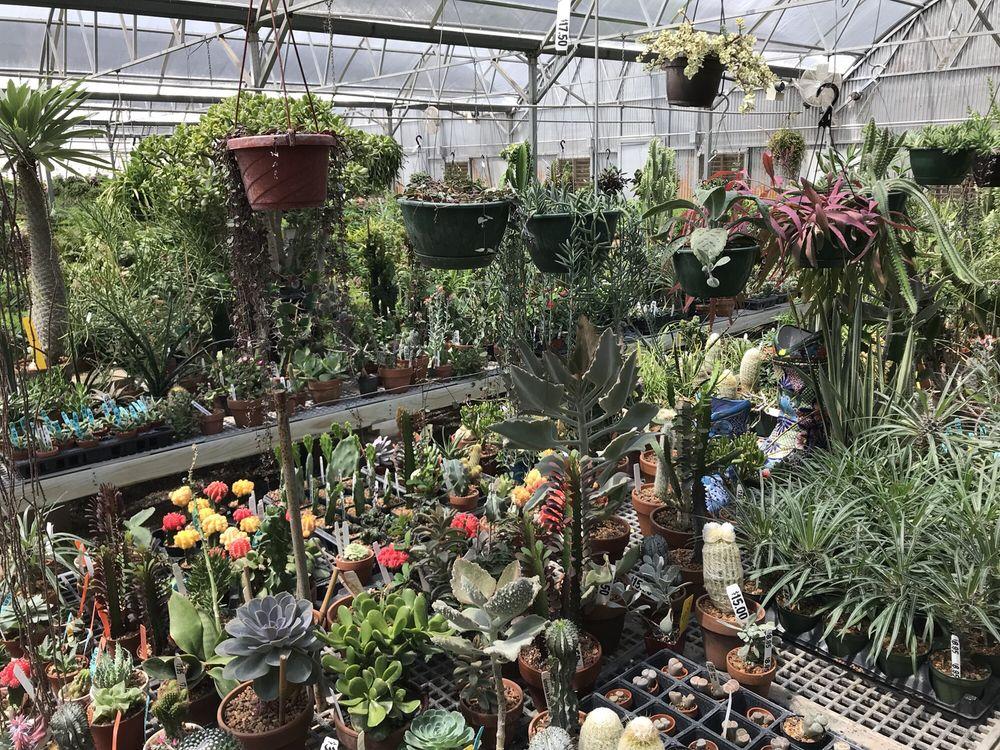 Taggart's Garden Center: 8490 US Hwy 81, Hennessey, OK